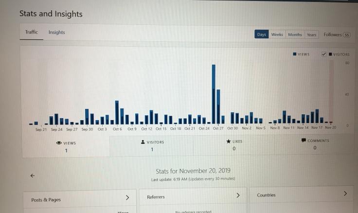 100 Days of Blogging Stats November 2019