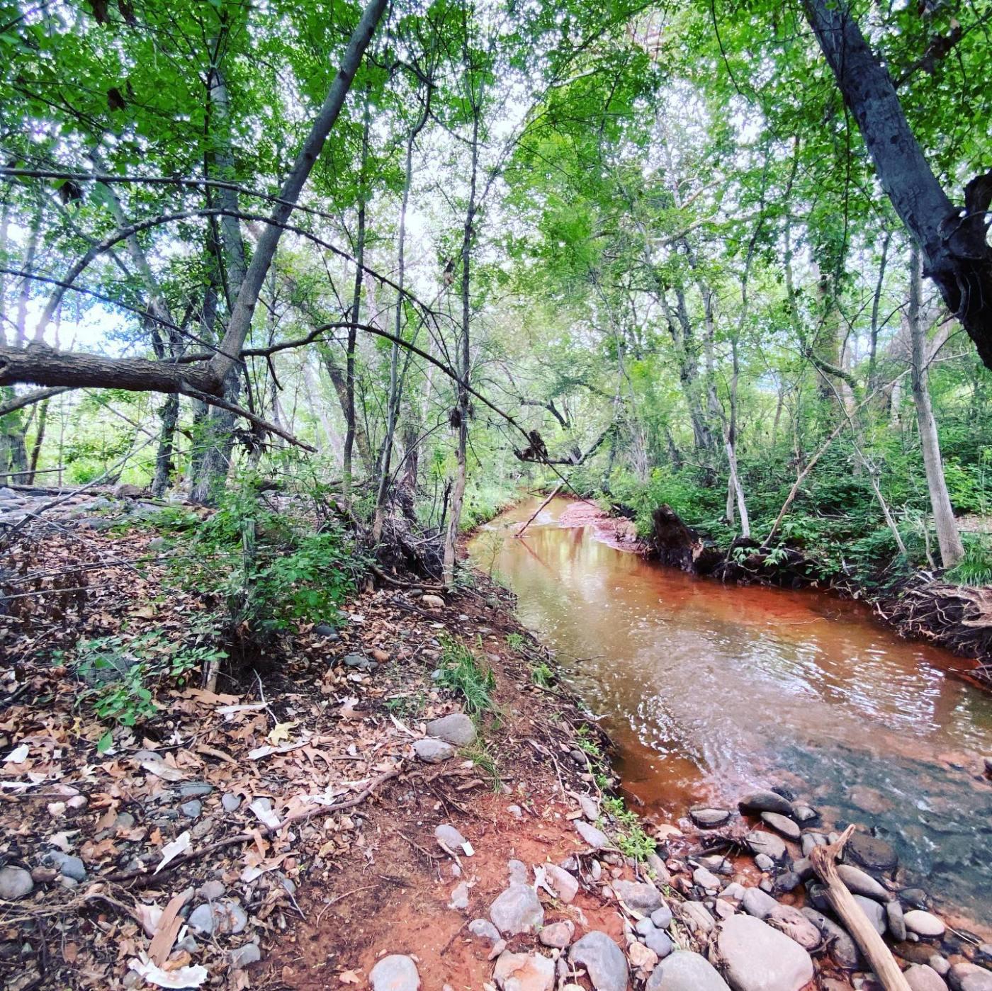Sedona creek